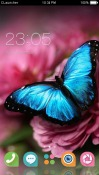 Flower of Attachment CLauncher Android Mobile Phone Theme