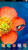 Muscari Flower CLauncher Theme for Samsung Galaxy Rush M830