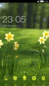 Beauty Flowers CLauncher Samsung Galaxy Rush M830 Theme