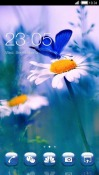 flower And Butterfly CLauncher Samsung Galaxy Rush M830 Theme