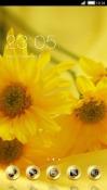 Yellow New Year CLauncher Samsung Galaxy Rush M830 Theme
