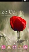 Love Pebble CLauncher Samsung Galaxy Rush M830 Theme