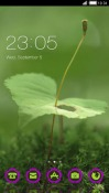 Green Plant CLauncher Samsung Galaxy Rush M830 Theme