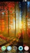 Fall CLauncher Samsung Galaxy Rush M830 Theme