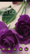 Purple Roses CLauncher LG Optimus G Pro Theme