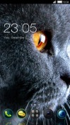 Cat CLauncher LG Optimus G Pro Theme