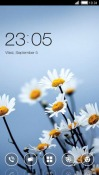 Beauty Flowers CLauncher Android Mobile Phone Theme