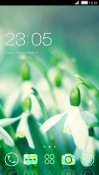 Tulip CLauncher Samsung Galaxy Rush M830 Theme