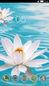 Water Lily CLauncher HTC Desire 300 Theme