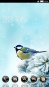 Bird CLauncher Android Mobile Phone Theme
