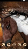 Horse CLauncher Android Mobile Phone Theme