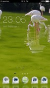 Swan CLauncher LG Optimus G Pro Theme