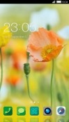 Orange Flower CLauncher Android Mobile Phone Theme