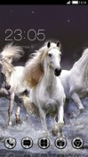 Horses CLauncher Android Mobile Phone Theme