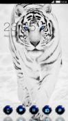 Snow Tiger CLauncher Android Mobile Phone Theme