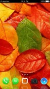 Colorful Leaves CLauncher Samsung Galaxy Rush M830 Theme