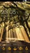 Forest CLauncher LG Optimus G Pro Theme