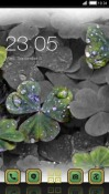 Wet Clovers CLauncher Android Mobile Phone Theme