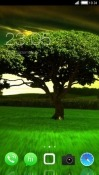 Green Tree CLauncher Android Mobile Phone Theme