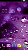 Purple Drops CLauncher Android Mobile Phone Theme