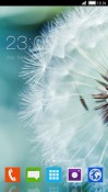 Dandelion CLauncher Android Mobile Phone Theme