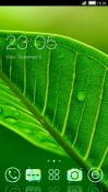 Green Leaf CLauncher Android Mobile Phone Theme