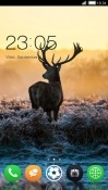 Deer CLauncher Android Mobile Phone Theme