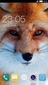 Fox CLauncher Android Mobile Phone Theme