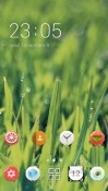Grass CLauncher Sony Xperia XA2 Theme