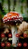 Mushroom CLauncher Android Mobile Phone Theme