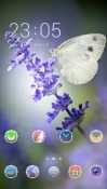 Butterfly CLauncher Android Mobile Phone Theme