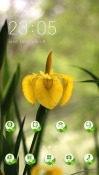 Yellow Flower CLauncher Android Mobile Phone Theme