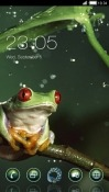 Frog CLauncher Android Mobile Phone Theme
