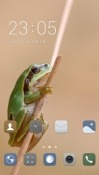 Frog CLauncher Oppo A7 Theme