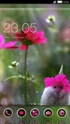 Flowers CLauncher LG K30 Theme