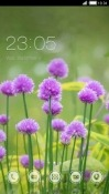 Purple Flowers CLauncher Samsung Galaxy A10 Theme