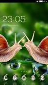 Snails CLauncher Samsung Galaxy A10 Theme