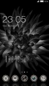 Black Flower CLauncher LG G Pad X 8.0 Theme