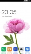 Download Free Pink Flower CLauncher Mobile Phone Themes