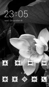 Download Free White Flower CLauncher Mobile Phone Themes