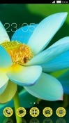 Blue Flower CLauncher Android Mobile Phone Theme