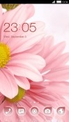 Pink Flower CLauncher Android Mobile Phone Theme