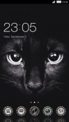 Black Cat CLauncher Android Mobile Phone Theme