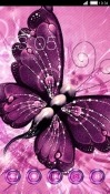 Purple Butterfly CLauncher Android Mobile Phone Theme