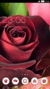Rose CLauncher Samsung Galaxy A8 (2018) Theme