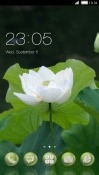 White Flower CLauncher Alcatel 1x (2019) Theme