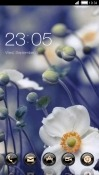White Flowers CLauncher Vivo V9 Youth Theme