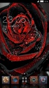Black Rose CLauncher Samsung Galaxy Tab A 10.5 Theme
