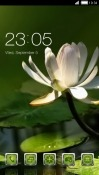 Flower CLauncher RED Hydrogen One Theme