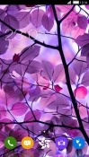 Download Free Purple Leaf CLauncher Mobile Phone Themes